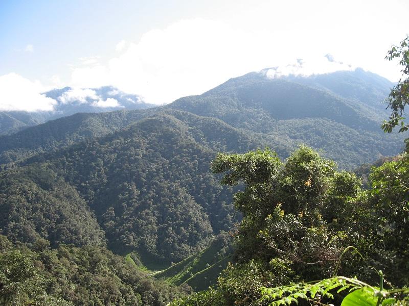 Corregimiento de el Saladito - Farallones deCali Colombia